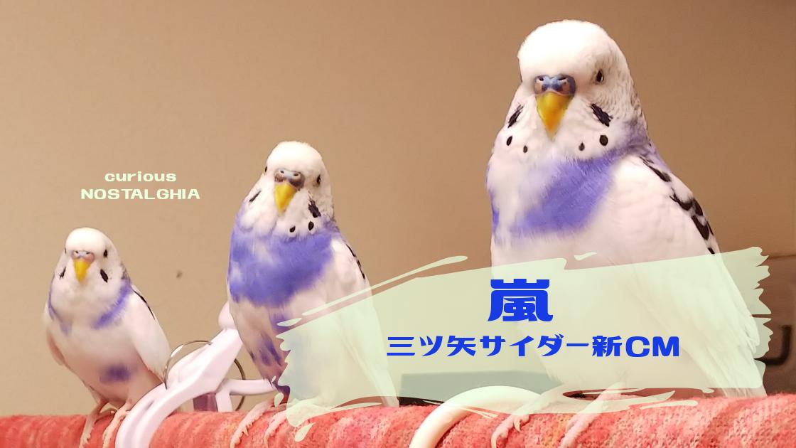 嵐 三ツ矢 サイダー cm